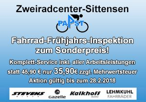 Angebot: Fahrrad-Frühjahrs-Inspektion